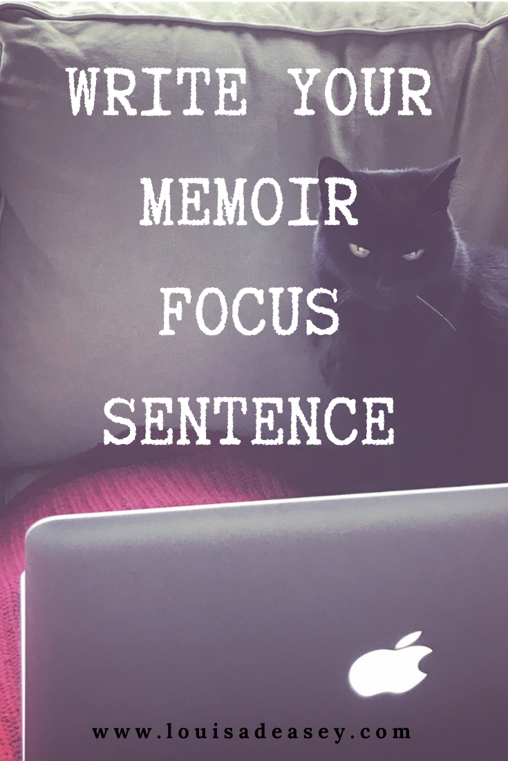 a focus sentence is essential to condensing a book length personal story
