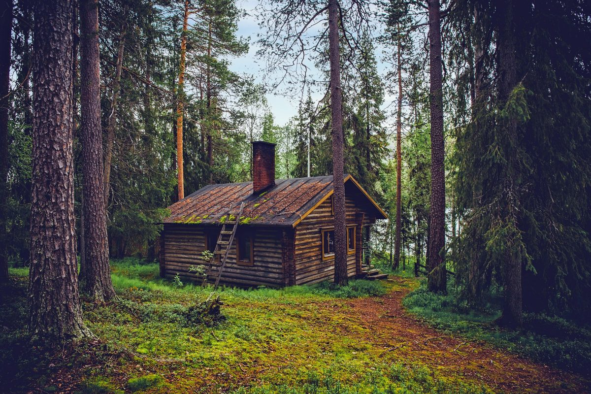 Cabin in the woods for writing